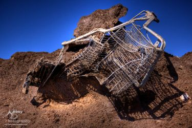 HDR Shopping Cart 2010 2 by Nebey