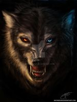 Canis Lupus by jekowekow