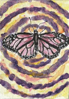 Pink butterfly watercolor aceo painting by tulipteardrops