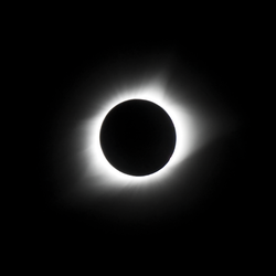 Dark Totality by daelly