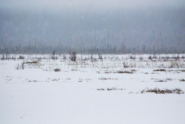Winter Lake 10 by prints-of-stock