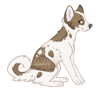 Adopt for sale - doge by icelandicsheep