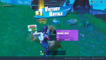 Very first Victory Royale by brianamcginnis