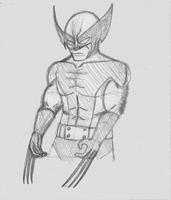 Another Wolverine sketch by nizebelami