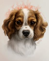 Cute looking doggy commission by MarkotnePierniki