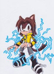 The Electric Cat by Sonic155