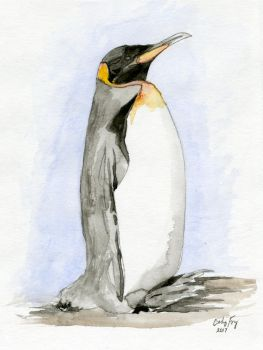 Penguin by lost-nomad07