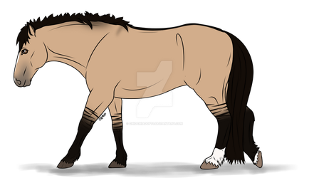 Mustang Adopt 006 (open) by ChiOchiAdopts