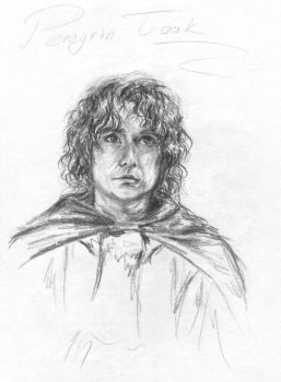 Peregrin Took by ChibiLeen