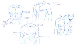 Man Chest Sketches by BowtieMySoul