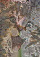 Mosaic CAT large!! 28800 Cat-Pictures by marderchen