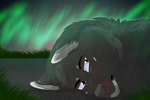 .: Out Among The Stars + Speed Paint :. by MorningAfterWolf