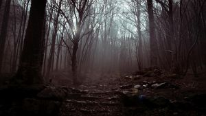The forest 4 by N0-Tolerance
