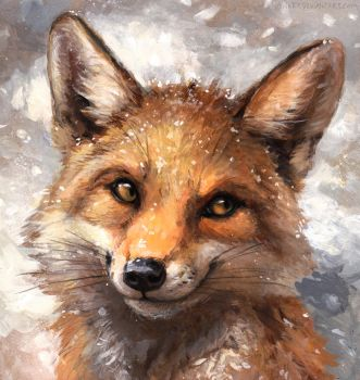 Winter Coat by kenket