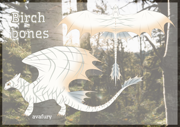 OPEN nf auction- birch bones by avafury