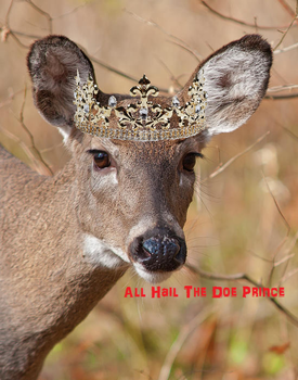 Doe Prince by STAG-KING