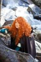 Merida - Fire Falls by Valdrein