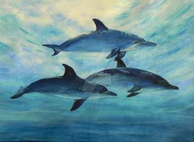 Dolphins by Drawing-girl