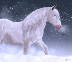 Snow Driven by ChellytheBean