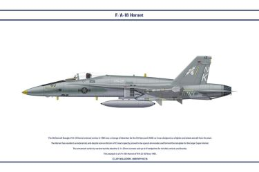 Hornet USA VFA-25 by WS-Clave
