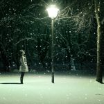 winter warmth 2 by photoflake