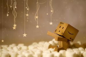 Danbo Heaven by BryPhotography
