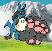 Lucario Feets by RaidenTheDeoxys