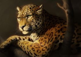 Catamancer Leopard by TamberElla