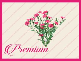 Flowers png by TinaLouiseUk