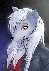 Silver Fox by Zefram