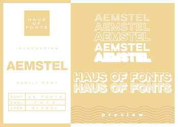 [12] : aemstel by HausOfFonts