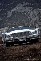 .White Caddy. by AmericanMuscle