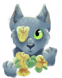 flowerz by wagtail-queen