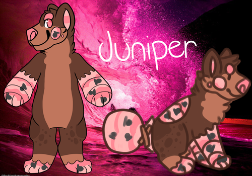 Juniper reference sheet by Breezeci15