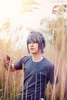 Noctis Lucis Caelum by twinfools