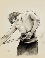 Zoro's Back by sargent94