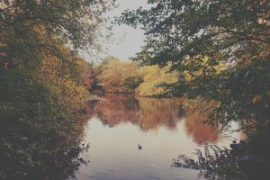 st stephen's green by Wreckofrooks