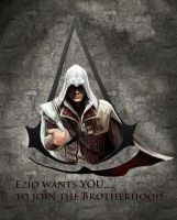 Nothing is true....Everything is Permitted by xxmihoxx