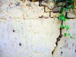 green cracks by avikdey