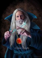 Wizard by RavenMorgoth