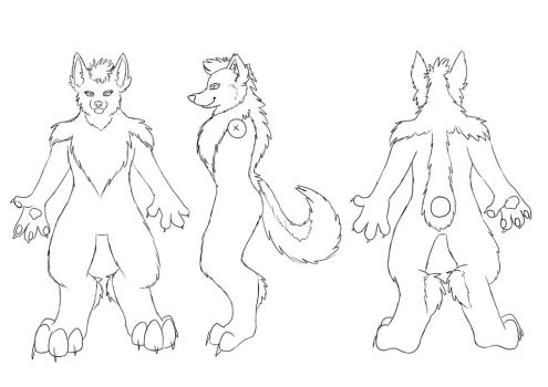 Canine Refsheet Free-to-use Base by Kloofcat