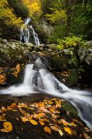 Autumn Falls at Spruce Flats by mewantsbekungfoo