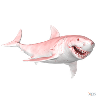 The Depth - Great White (Albino) by MrUncleBingo