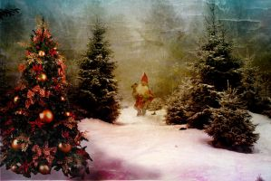 Weihnachtswald - Santa on the Road by Cundrie-la-Surziere