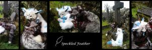 For Sale: Dragon Dogs (EU ONLY) by Speckled-Feather-UK