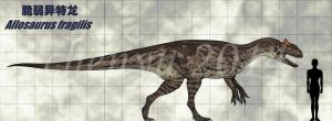 Allosaurus fragilis by sinammonite