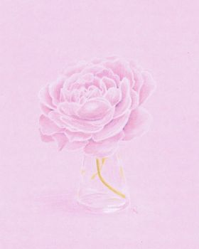 Peony by Rannegs