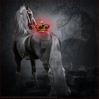 Horse Avatar | The Darkling by Liberty-Designs