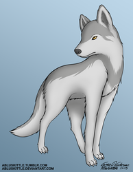 Grey Wolf - Commission by ABluSkittle