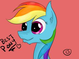 Rainbow Dash is best pony by ChickenSteve